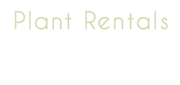 Plants Rental Header