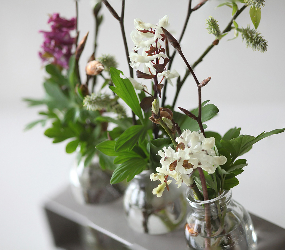 Creating an Arrangement Decor